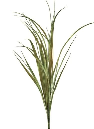 The Mia Fiorina Grass Yeşil  Yeşil